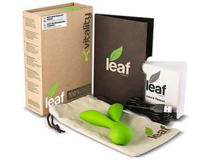 Leaf Vitality Vibrator